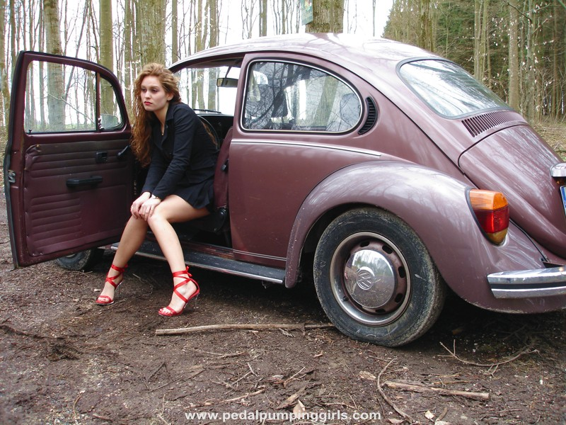 Vw Beetles Beetle And Pin Up On Pinterest